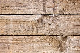 Wood Texture Photograph By Tim Hester