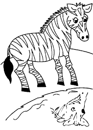 Animal Preschool Coloring Pages Zebra