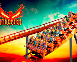 Deal: Six Flags America 'Any Day' Admission - Includes Hurricane Harbor  Waterpark! | CertifiKID Six Flags Discovery Kingdom Coupons July 2018 Modern Vintage Promocode Lawn Youtube The Viper My Favorite Rollcoaster At Flags In Valencia Ca 4 Tickets And A 40 Ihop Gift Card 6999 Ymmv Png Transparent Flagspng Images Pluspng Great Adventure Nj Fright Fest Tbdress Free Shipping 2017 Complimentary Admission Icket By Cocacola St Louis Cardinals Coupon Codes Little Rockstar Salon 6 Vallejo Active Deals Deals Coke Chase 125 Dollars Holiday The Park America