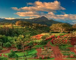 Incredible National Tropical Botanical Garden Kauai National