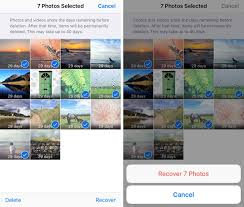 How To Use iPhone Albums To Organize s
