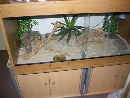 Bearded Dragon Heat Lamp Broke by Bearded Dragon Tank Reptile Forums Ntl Trans Pinterest
