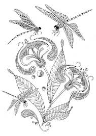 Adult Colouring Pages Of Dragonfly And Flower Illustration Printable Coloring As An Instant Digital