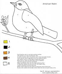13 Birds For Wolf Elective Robin Nature Coloring Sheet