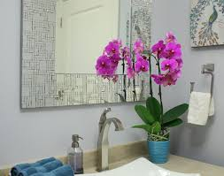 Plants In Bathroom Feng Shui by Feng Shui For The Bathroom Euphoric Feng Shui