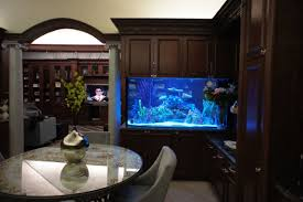 Custom Fish Tanks Nj In Sparkling Custom Fish Tanks Tanked ... 60 Gallon Marine Fish Tank Aquarium Design Aquariums And Lovable Cool Tanks For Bedrooms And Also Unique Ideas Your In Home 1000 Rousing Decoration Channel Designsfor Charm Designs Edepremcom As Wells Uncategories Homes Kitchen Island Tanks Designs In Homes Design Feng Shui Living Room Peenmediacom Ushaped Divider Ocean State Aquatics 40 2017 Creative Interior Wastafel