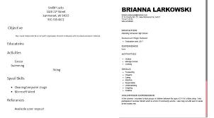 Bad Resume Examples Pdf 10