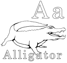 Alligator Coloring Pages Free Kids