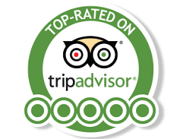 For Travelers Worldwide TripAdvisor Is A Trusted Source Trip Planning Booking And On Location Activities As Of November 2016 Had 390