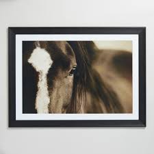 Dark Horse Eyes By Lisa Dearing With Frame Black Brown White Natural