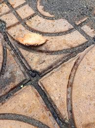 Rbc Tile Stone Of Iowa by Journeys
