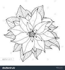 Poinsettia Coloring Page Pdf Book Pages Legend Of The Sheet Stock Vector Isolated Flower Vintage Artwork