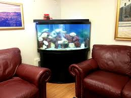 Minecraft Living Room Ideas by Fish Tank In Living Room With Wonderful Design Ideas U2013 Digsigns