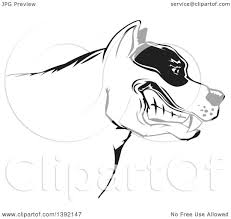 Clipart of a Tough Snarling Black and White Pit Bull Dog Head in