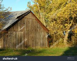 Old Barn Fall Colors On Warm Stock Photo 6637144 - Shutterstock A Pretty Old Barn The Bookshelf Of Emily J Kristen Hess Art Rustic Shed Free Stock Photo Public Domain Pictures Usa California Bodie Barn On Plains Royalty Images Wood Vintage Building Old Home Country Wallpapers Pack 91 44 Barns And Folks Maxis Comments Vlad Konov August Grove Ryegate Rainy Day 3 Piece Pating Print Overgrown Warwickshire England Picture Renovation Inhabitat Green Design Innovation Farm Buildings Click Here For A Larger View