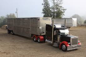 SouthEast Cattle Brokers, LLC. | Services Available Us Bank Truck Freight Services Spending Grew 25 In 2017 Flatbed Driving Jobs Cypress Lines Inc South East Asia Bus Exhibition Commercial Vehicle Expo Truck Driving Jobs For Felons Youtube Spend Your Weekends At Home With Cdla Driver Truck Trailer Transport Express Logistic Diesel Mack Trucking Company Council Bluffs Ia Nebraska Coast Drivers Southeast Milk Shelton Get Me More Uber Design Medium Southeastern Global Trade Magazine Produce Shipments Archives Haul Produce