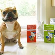 Cannapet - Hash Tags - Deskgram Best Cbd Oil For Dogs In 2019 Reviews Of The Top Brands And Grateful Dog Treats Canna Pet King Kanine Coupon Code Review Pets Codes Promo Deals On Offerslovecom Hemppetproducts Instagram Photos Videos Cbd Voor Die Diy Book Marketing Buy Cannabis Products Online Mail Order Dispensarygta April 2018 Package Cannapet Advanced Maxcbd 30 Capsules 10ml Liquid V Dog Coupon Finder Beginners Guide To Health Benefits Couponcausecom Purchase Today Your Chance Win A Free Cbdcannabis Hashtag Twitter