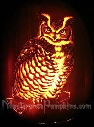 Owl Pumpkin Template by Great Horned Owl