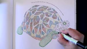 Millie Marottas Animal Kingdom Amazing Adult Colouring Book Full Speed Colour Tortoise