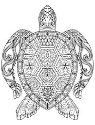 Adults Printable Summer Coloring Pages 73097