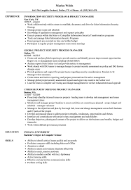Download Project Security Manager Resume Sample As Image File