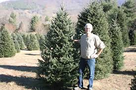 Christmas Tree Farms In Boone Nc by The Christmas Tree At The Carolina Bed U0026 Breakfast Carolina Bed