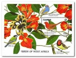 Gambia 1989 West African Birds Ms1