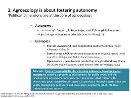agroecological socio economics impacts and principles