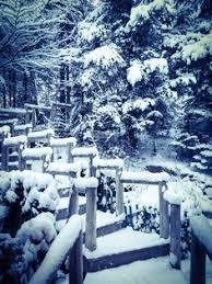 chalets du grand duc chalet le malard en hiver chalet le malard en hiver bois forêt