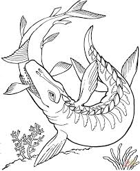 Click The Mosasaurus Dinosaur Coloring Pages To View Printable Version Or Color It Online Compatible With IPad And Android Tablets