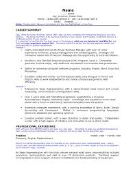 How To Write A Professional Summary For A Resume by Agreeable Resume Career Summary With Additional How To Write A