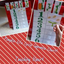 Life Cycle Of A Pumpkin Seed Worksheet by A Pumpkin Unit Filled With Lessons Printables And More