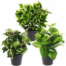 deko blumen künstliche pflanzen aus kunststoff fürs