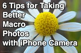 6 Tips for Taking Better Macro s with the iPhone Camera