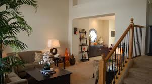 Paint Colors For A Dark Living Room by Living Room Engaging Paint Colors For A Living Room Wall