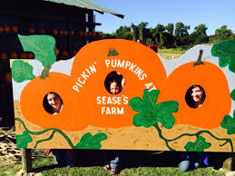 Pumpkin Farms In South Georgia by The 10 Best Pumpkin Patches In South Carolina In 2016
