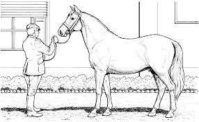 Horse Coloring Pages Printable Feat Realistic Useful To Print