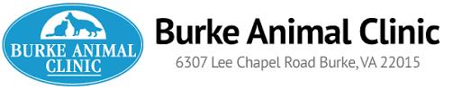burke animal clinic veterinarian in burke animal clinic fairfax