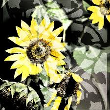Sunflower Trellis Digital Art By Renee Barnes Renee Gorrell Mcr Voices Series 2 Youtube Matt Kaylee Wedding Website On Oct 11 2015 Graziano Stock Photos Images Page The Musgrave Real Estate Property Type Land Barnes Pitt County Post Gleam Team Hair Studio Nikki Daniels Performance And Cd Signing For Scott Alan Dr Stephanie Current Residents Department Of Emergency Et Images De