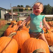 Lakeview Pumpkin Patch by Baby B U0026 Me Visiting Brasee U0027s Corn Maze And Pumpkin Patch