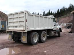 1994 Ford LTA9000 Dump Truck For Sale | Seely Lake, MT | 236785 ...
