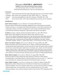 Resume Summary Examples For Software Developer Samples Engineers With Experience Reference