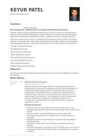Deputy General Manager Resume Example