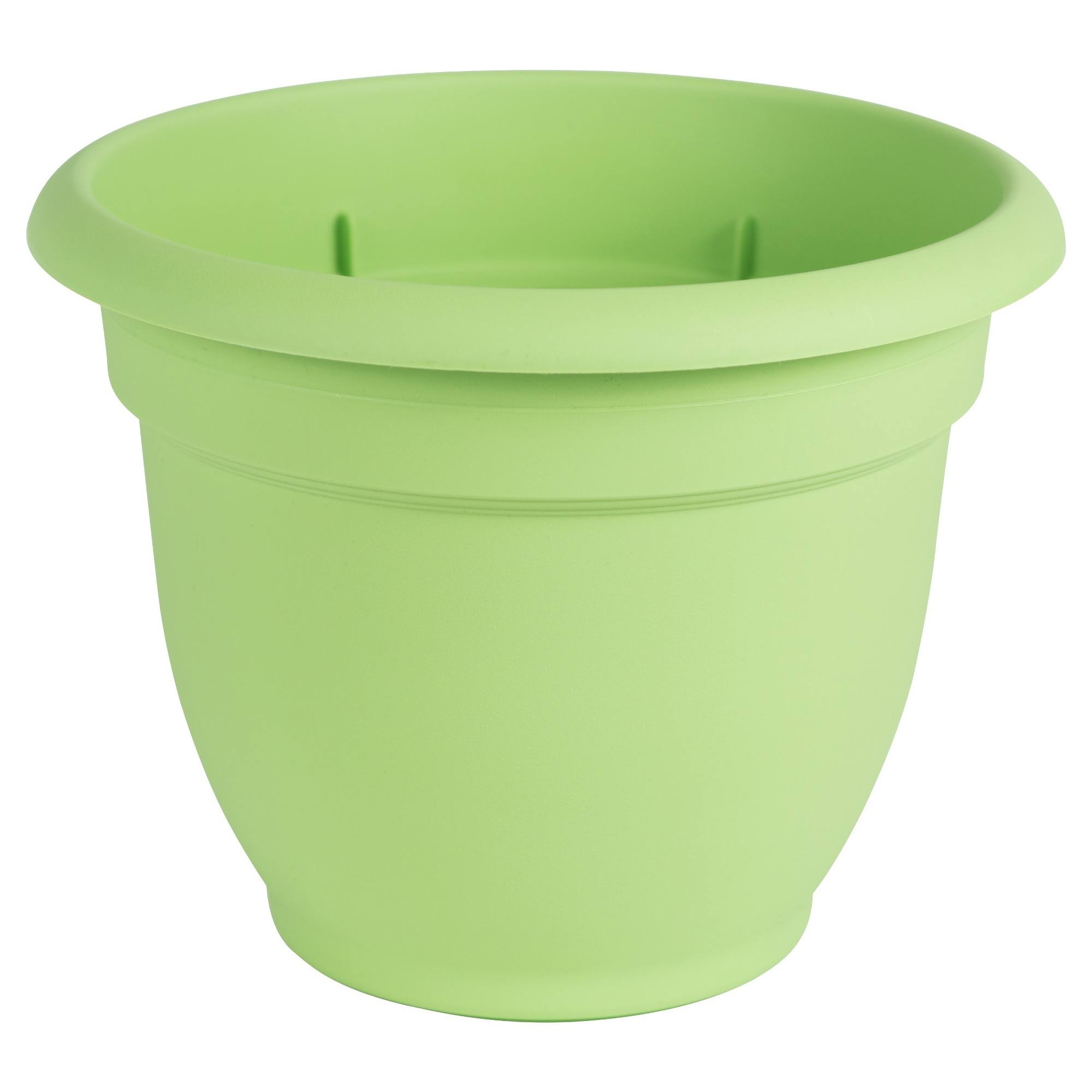 Bloem AP0625 Ariana Planter with Self Watering Disc Insert - Honey Dew, 6""