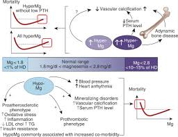 pth normal range uk magnesium and the risk of all cause and cardiac mortality in