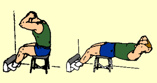 Roman Chair Sit Ups by Preventdisease Diet And Fitness Resource