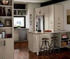 Grey Cabinets in Casual Kitchen Kitchen Craft Cabinetry