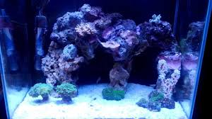 Nano Reef - Sick Aquascape - YouTube Home Design Aquascaping Aquarium Designs Aquascape Simple And Effective Guide On Reef Aquascaping News Reef Builders Pin By Dwells Saltwater Tank Pinterest Aquariums Quick Update New Aquascape Of The 120 Youtube Large Custom Living Coral Nyc Live Rock Set Up Idea Fish For How To A Aquarium New 30g Cube General Discussion Nanoreefcom Rockscape Drill Cement Your Gmacreef Minimalist 2reef Forum
