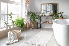 pflanzen im badezimmer so dekorieren sie schön