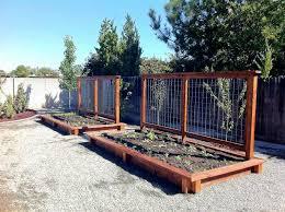 Pallet Vegetable Garden Box Unique Raised Veggie Growing Ve Ables In Beds